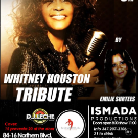 Image for Whitney Houston Tribute in Jackson Heights NY