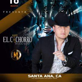 Image for Mario El Cachorro Delgado en Santa Ana,CA