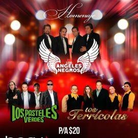 Image for LOS ANGELES NEGROS- LOS TERRICOLAS - LOS PASTELES VERDES Homenaje
