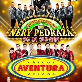 Image for NERY PEDRAZA Y LOS CHICOS AVENTURA