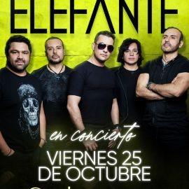 Image for ELEFANTE EN LOS ANGELES