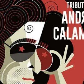 Image for Tributo Calamaro