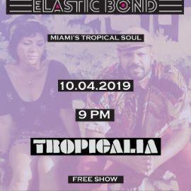 Image for Elastic Bond live at Tropicalia DC