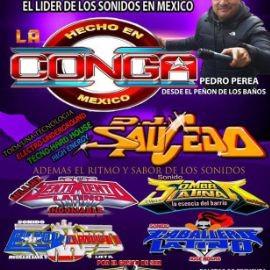 Image for Sonido La Conga y Mas En Elgin,IL