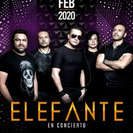 Image for ELEFANTE EN DEL RIO