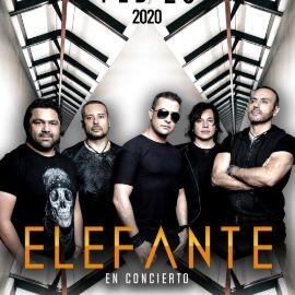 Image for ELEFANTE EN ODESSA