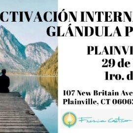 Image for Seminario: ACTIVACIÓN INTERNA DE LA GLÁNDULA PINEAL
