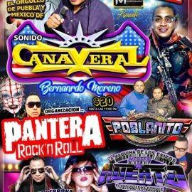 Image for Sonido Cañaveral, Pantera Rock, Poblanito, Son Cubaney, Mister Huerta, Irlandes en Vivo!