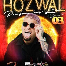 Image for hozwal