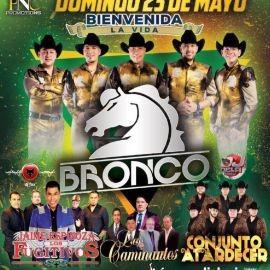 Image for Bronco, Jaime Espinoza & Los Fugitivos, Conjunto Atardecer y Los Caminantes en Vivo!