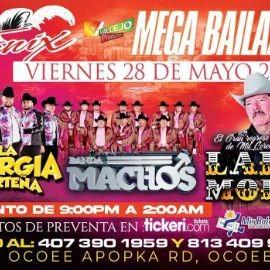 Image for Mega Bailazo con La EnergiaNorteña, Banda Machos y Lalo Mora en Vivo!